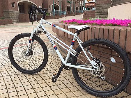 2WD Mountain Bike