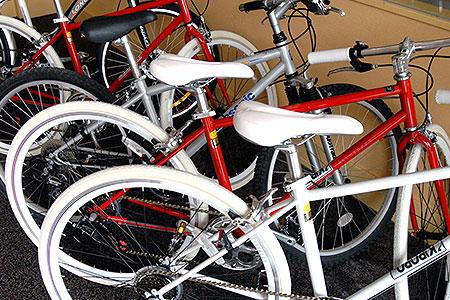 Mountain Bike / Bicycle